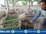 peternak-kambing-desa-klutuk-kecamatan-tambakboyo.jpg