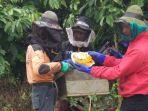 peternak-lebah-desa-sumber-urip_20181024_094547.jpg