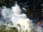 petugas-bnpb-berusaha-padamkan-kebakaran-hutan-sumsel_20200829_173507.jpg