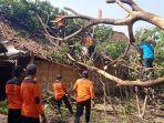 petugas-bpbd-memotong-pohon-roboh-akibat-angin-kencang.jpg