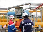 Pengamat Energi Ungkap Pembangunan Infrastruktur Gas Terancam Melambat Akibat Hal Ini