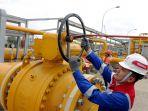 PGN Perluas Jaringan Gas Untuk Rumah Tangga Hingga ke Cilegon