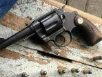 pistol_20180124_175030.jpg