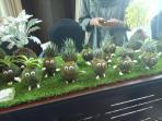 planter-craft_20160321_155303.jpg