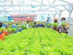 pln-salurkan-rp-48-miliar-bantu-petani-di-54-lokasi-lewat-program-electrifying-agriculture.jpg