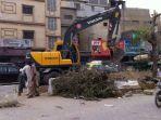 pohon-ditebang-untuk-proyek-transportasi-di-pakistan-foto-naeem-sahoutara_20170825_165852.jpg