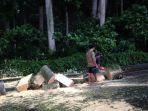 pohon-tumbang-di-badung_20161214_163352.jpg