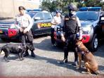 polisi-dan-anjing-pelacak_20151116_130526.jpg