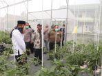 Lawan Pandemi, Ponpes Al Mizan di Majalengka Punya Program Pesantren Agrokultur