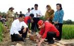 presiden-jokowi-bangun-saluran-irigasi_20150120_202904.jpg