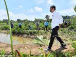 presiden-jokowi-menanam-pohon-mangrove-di-desa-tritih-kulon_20210923_193709.jpg