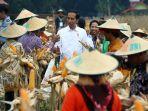 presiden-melakukan-panen-raya-bersama-petani-penerima-kur-bni_20180309_211518.jpg
