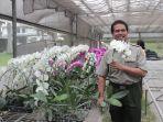 pt-ekakarya-graha-flora-menghadirkan-lahan-pembibitan-anggrek.jpg