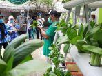 pt-jamkrindo-memfasilitasi-pelatihan-budidaya-hortikultura-dengan.jpg