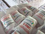 Hingga Februari, Pupuk Indonesia Salurkan 1,2 juta Ton Pupuk Bersubsidi