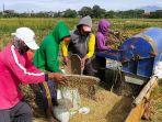Pemda Kalteng Apresiasi Dukungan Penuh Pemerintah Pusat untuk Food Estate