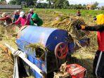 puluhan-petani-padi-bandung-panen_20210104_103556.jpg
