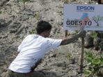 rayakan-20-tahun-perjalanan-di-indonesia-epson-tanam-1000-bibit-mangrove-di-kalimantan-barat.jpg
