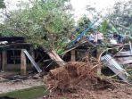 rumah-hancur-tertimpa-pohon.jpg