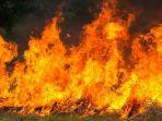 Seorang Pria Dibakar Tetangga di Depan Istri saat Pulang Kerja, Pelaku Tiba-tiba Siramkan Cairan