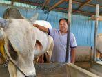 safran-ketika-memberi-makan-sapi-miliknya-di-kelurahan-nunu.jpg