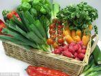 sayuran-segar2.jpg