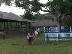 sekolah-ini-setahun-mampu-hasilkan-dua-ton-pupuk-organik_20170224_212607.jpg