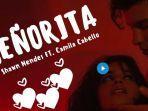 senorita-by-shawn-mendes-featuring-camila-cabello.jpg