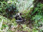 Seorang ASN Ditemukan Tewas di Jurang Rindingallo Toraja Utara, Diduga Alami Kecelakaan Tunggal