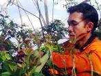 seorang-petani-sedang-mengecek-proses-pembibitan-tanaman-alpukat-di-dusun-alpukat_20180918_164509.jpg