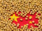 China Genjot Stok Kedelai Tahun Ini untuk Perkuat Ketahanan Pangan Nasional