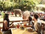 taman-safari-indonesia-bogor.jpg