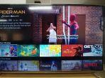 Kominfo Tegaskan KPAI Tak Berwenang Blokir Konten YouTube dan Netflix