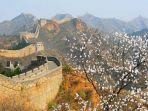 22 Fakta Unik Tembok Besar China, Dibangun Manusia hingga Mitos Bisa Dilihat dari Bulan