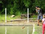tempat-pemancingan-drafi-family-fishing-02_20151213_102513.jpg