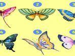 tes-kepribadian-gambar-kupu-kupu.jpg