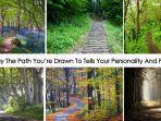 tes-kepribadian-memilih-satu-dari-enam-pohon-untuk-ungkapkan-karakter.jpg