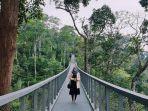 the-habitat-penang-hill-penang-malaysia.jpg