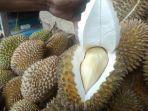 tips-memilih-durian-daging-tebal.jpg