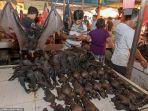tomohon-pasar-hewan-ekstrem.jpg