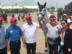 Kembangkan Atlet Berkuda Indonesia, Equestrian Champions League Dihelat di Dua Venue