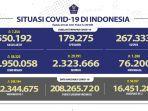 update-covid-19-di-indonesia-selasa-2072021.jpg