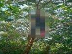 Viral Video Pemuda di Ketapang Tewas Gantung Diri di Pohon, Ternyata Korban Berasal dari Garut