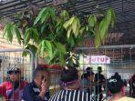 warga-mendatangi-kantor-pelayaran-nasional-indonesia-pelni-batam.jpg