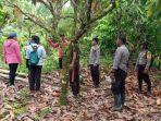 warga-setempat-temukan-mayat-petani-di-desa-pendolo-ke.jpg