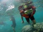 wisata-bawah-laut-kepulauan-seribu_20161109_112843.jpg