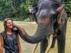 wisatawan-bermain-bersama-gajah-di-tangkahan.jpg