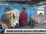 yudi-prianto-peternak-sapi-menuturkan-bahwa-sapi-yang-dibeli-presiden-jokowi.jpg