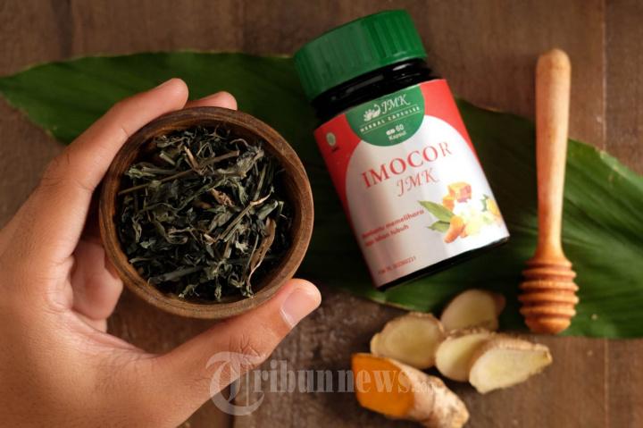 Obat Herbal Tidak Memiliki Efek Samping Asalkan Diolah Secara Khusus oleh Ahlinya