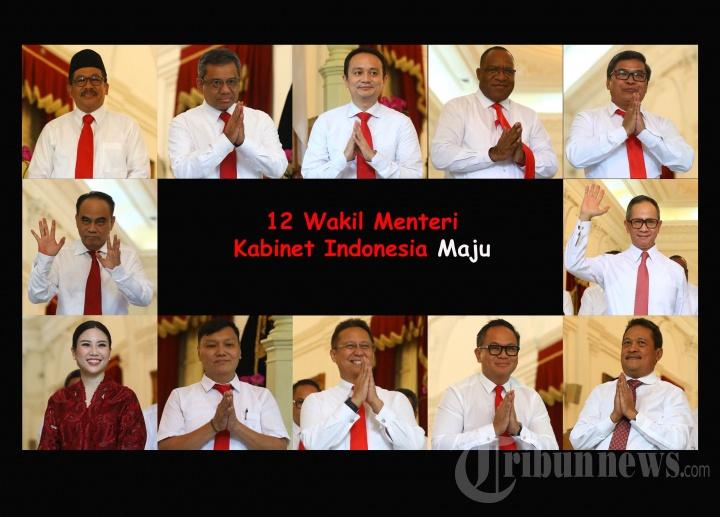 Profil 12 Wakil Menteri Kabinet Indonesia Maju